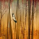 Fantasy Flight by Jessica Jenney