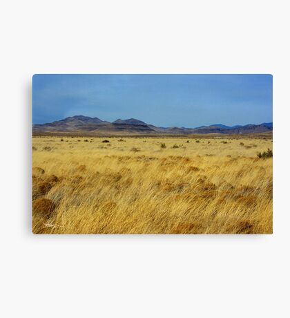 Table Butte ~ Southwest New Mexico Canvas Print