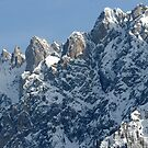 The Dolomites by Bertspix1