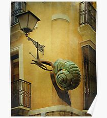 caracol Poster