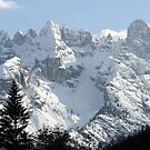 The Dolomites -4- by Bertspix1