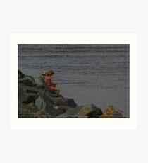 Fisher woman Art Print