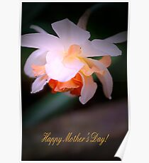 Happy Mother's Day card with daffodil Poster