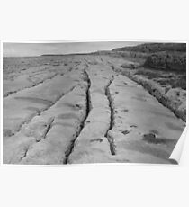 Limestone pavement in black & white Poster