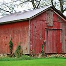 The Barn by Michelle BarlondSmith