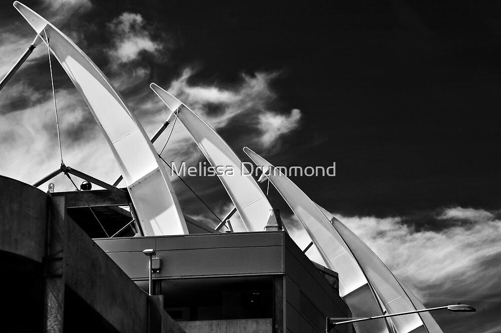 Stadium by Melissa Drummond