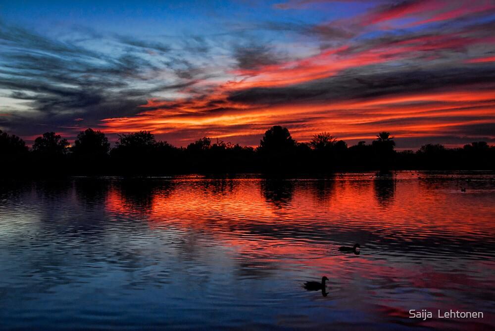 Red Sky by Saija  Lehtonen