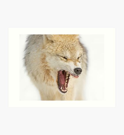 Mean looking Yawn! Art Print