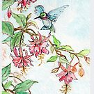 Honeysuckle Hummingbird by Annie Mason