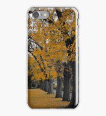 Autumn's Golden Gown  iPhone Case/Skin