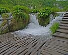 Wet Walkway,  Plitvice Lakes National Park, Croatia by Margaret  Hyde