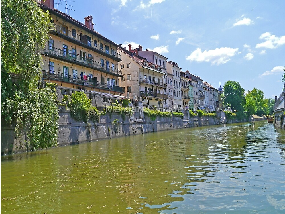Homes along the Ljubanica River, Ljubljana, Slovenia by Margaret  Hyde