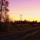 Rural Tracks (Columbia Falls, Montana, USA) by rocamiadesign