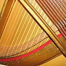 Harps of Gold - Inside the Piano by BlueMoonRose