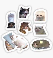 Crying Cat Meme Pack Sticker
