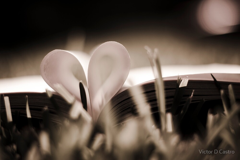 Paper Love by Victor D Castro