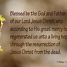 1 Peter 1:3  Our living hope by Robin Clifton