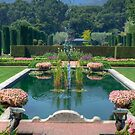 Fountain at Filoli Gardens by Diego Re