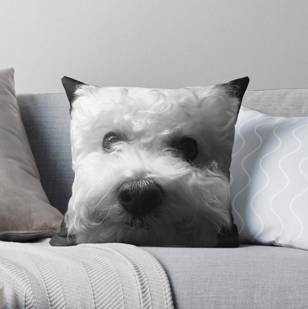 Bichon Frise - Black and White Throw Pillow