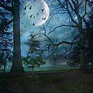 Late at Night by John Rivera