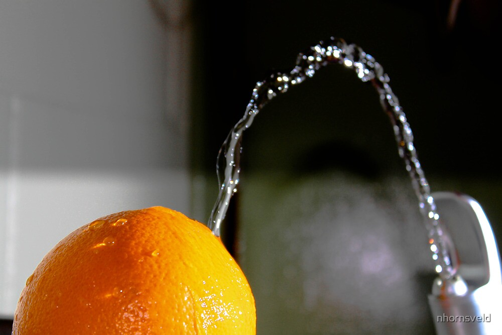 Fountain of fruit by nhornsveld