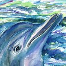 Dolphin by mleboeuf