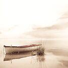 Lake Hallstadt, Austria by LauraZim