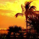 Sanibel Sunset by Randall Faulkner