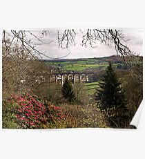 Calstock Viaduct from Cotehele Poster