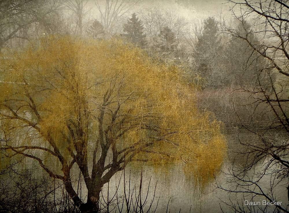Milwaukee Lagoon © by Dawn Becker