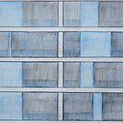 Blue Windows by Joan Wild