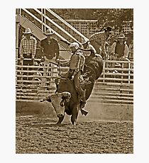 A Rodeo Cowboy Riding His Bull Photographic Print