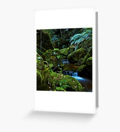 The Brook - Terrace Falls Greeting Card