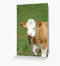 Mad Cow 1 Greeting Card