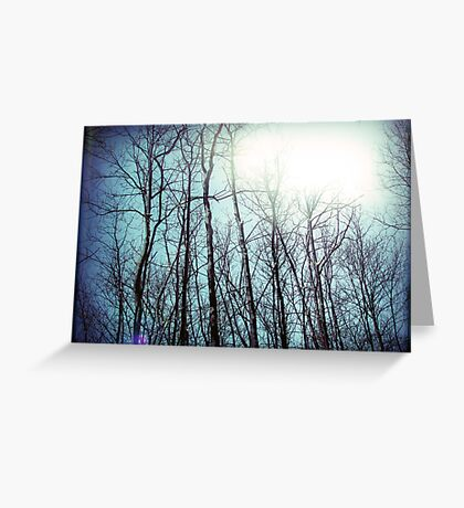 a whispered love story floating in the tops of the trees fingertips Greeting Card