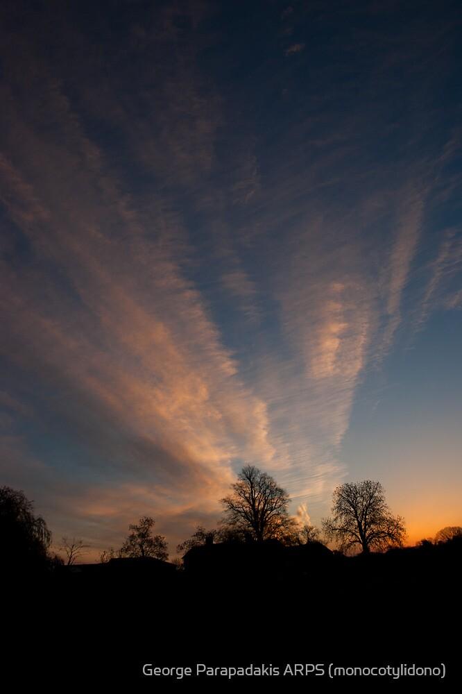 Thursday Morning, 6am - As Is by George Parapadakis (monocotylidono)