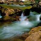 Babbling Brook by J Jennelle
