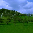 Green hill by TigerOPC