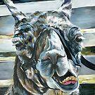 Hello Llama by DawnEaton