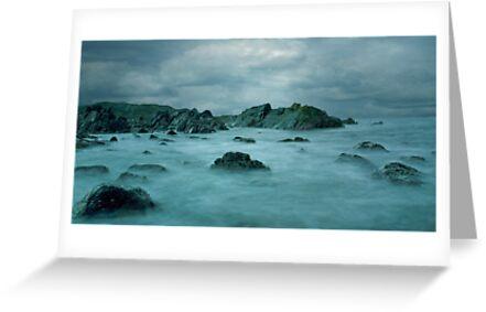 Seal-Isle by bbtomas