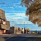 Downtown Columbia Falls (Montana, USA) by rocamiadesign