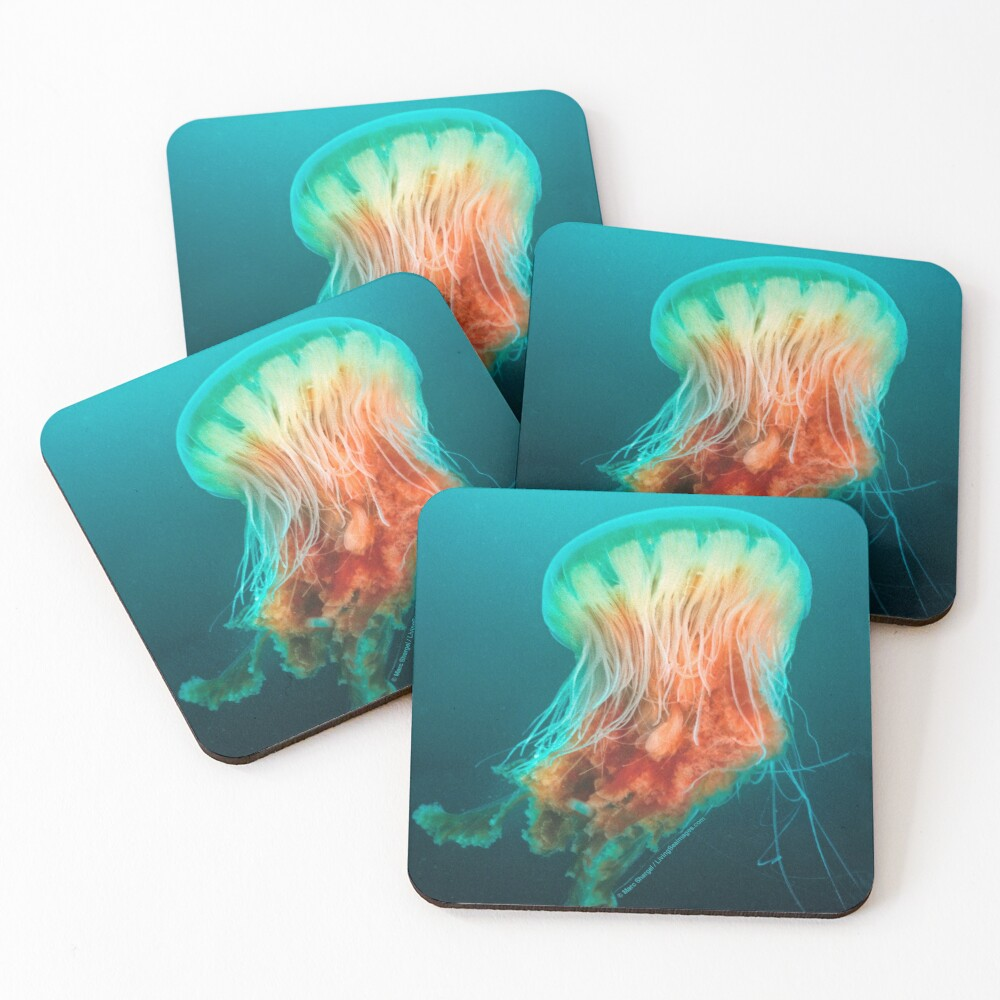 Egg Yolk Jelly, 1999 Coasters (Set of 4)