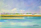 Gold Coast Broadwater by Virginia McGowan