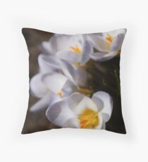 the soft and sultry white lady crocus Throw Pillow