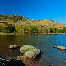 Blea Tarn, Little Langdale - Waters Edge by John Hare