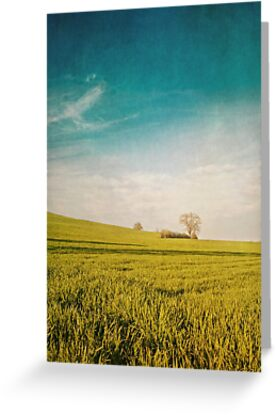 Meadow and Sky by Priska Wettstein