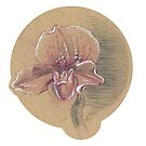 Orchid Study on Brown Paper Sticker by April Neander