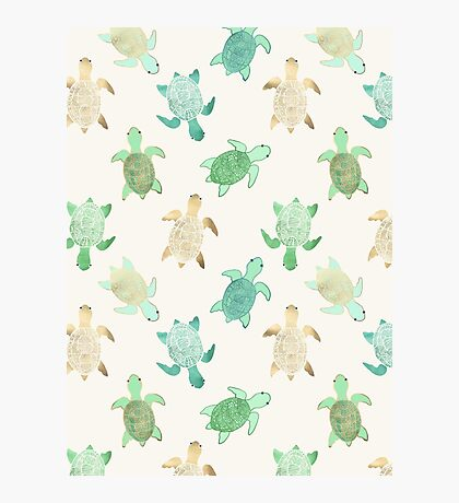 Gilded Jade & Mint Turtles Photographic Print