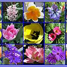 Flowers of Spring Collage by BlueMoonRose