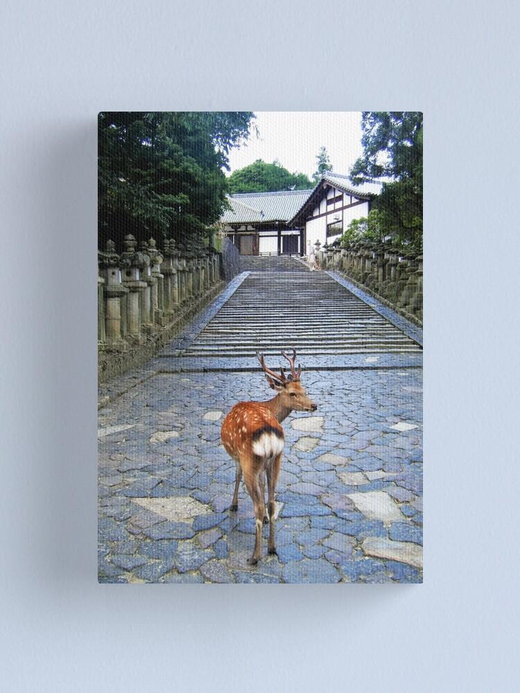 Alternate view of Nara 1 Canvas Print